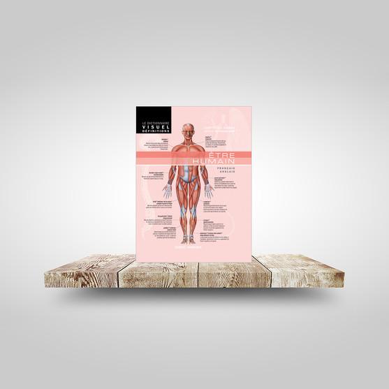 Dictionnaire Visuel Définitions - Être humain