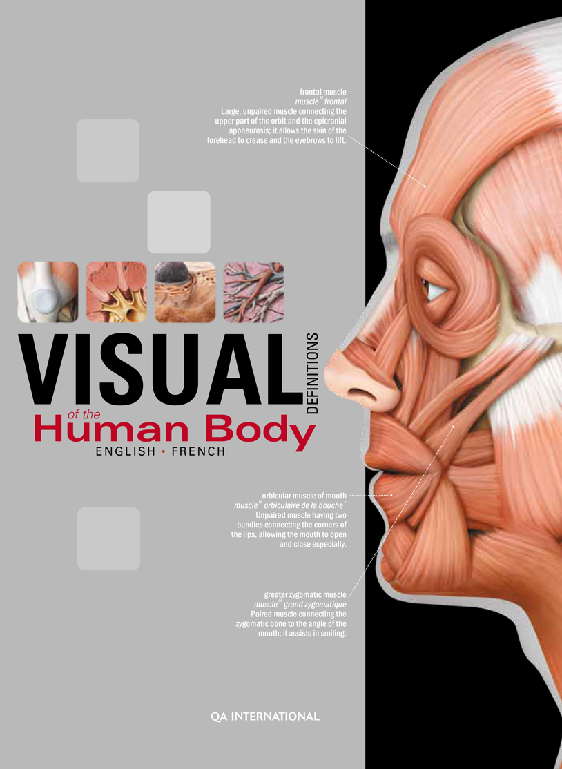 The Visual Dictionary of the Human Body - QA international ...