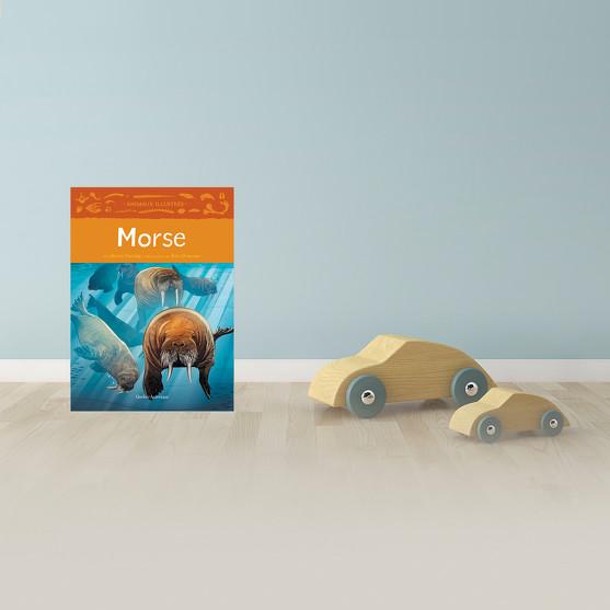 Morse