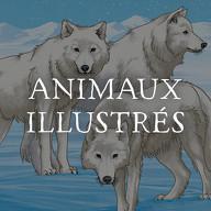 Animaux Illustrés (Les)